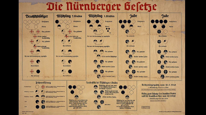 "Stage 3 : Discrimination. Chart of the Nuremberg Laws (1935) differentiating between the ""Aryan race"" (white circles), Jews (black circles) and persons of ""mixed blood"".  Source : United States Holocaust Memorial Museum"